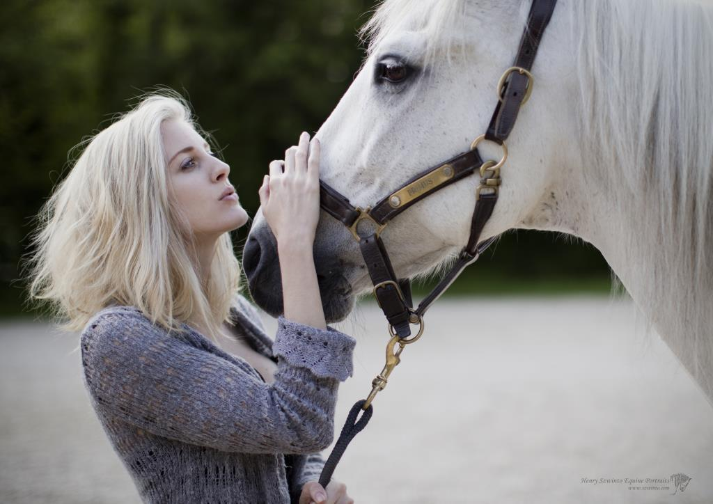 Equine Photography of horse and owner