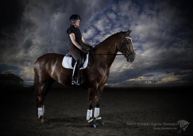 Composite rider and horse portrait