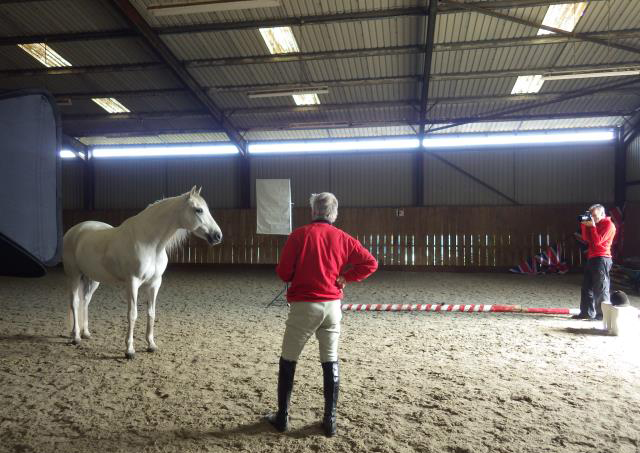 Equine Photography in an indoor school
