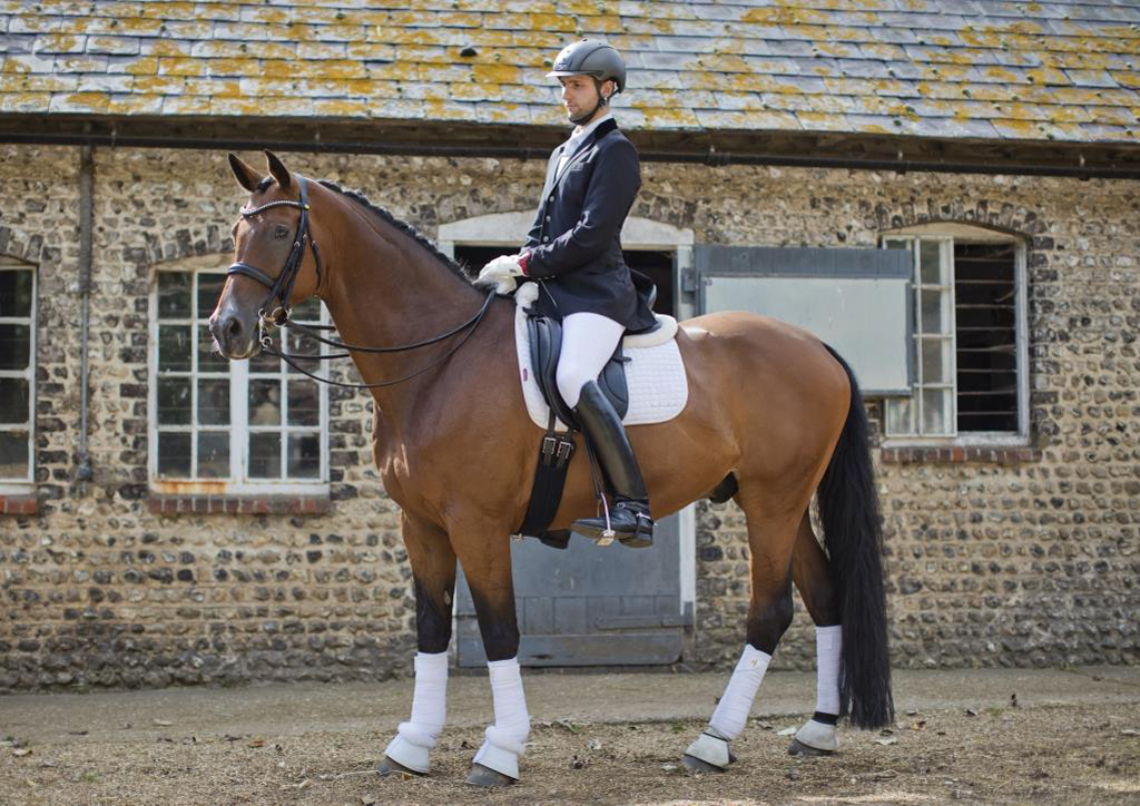 Dressage Rider Lasseter stud Equine studio horse portrait in the New Forest Hampshire Equestrian