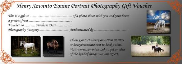 Gift Birthday Voucher photoshoot Equine studio horse portrait in the New Forest Hampshire Equestrian Dressage Eventing