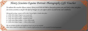 Gift Christmas Birthday Voucher photoshoot Equine studio horse portrait in the New Forest Hampshire Equestrian Dressage Eventing