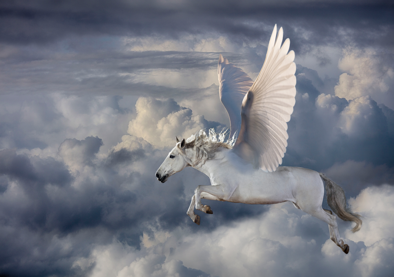 pegasus mythology